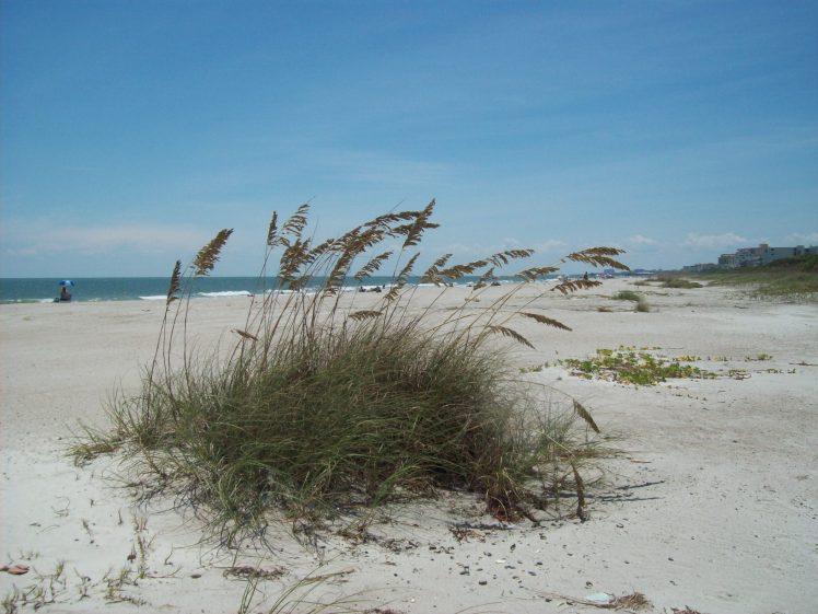 florida beach sea pod