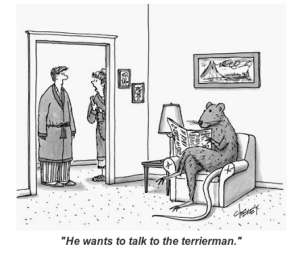 terrierman gets visit froma parent