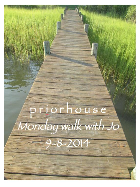 walk with Jo - 9-8-2014