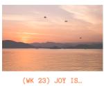kans joy is challenge week 23