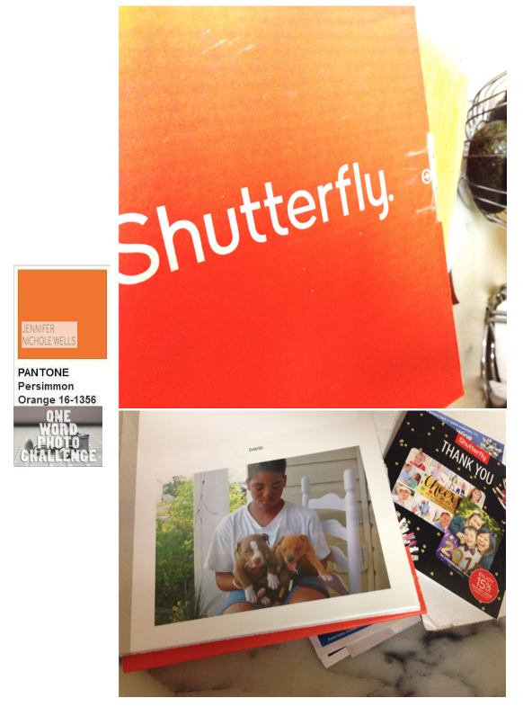 persimmon colored box from shutterfly