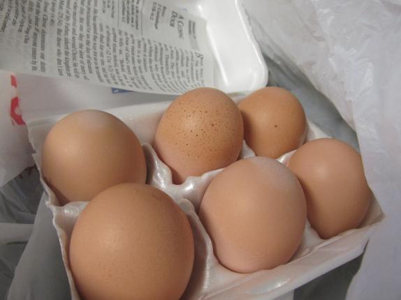 eggs from geisla
