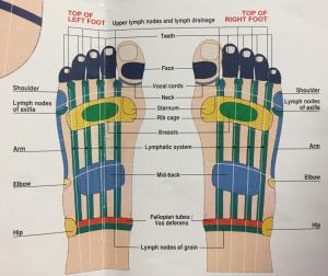 feet-top