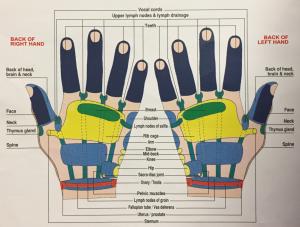 hands-back