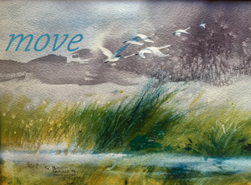 art-move-sevenday-snow-geese-maryland-1992-c-booth-farcus