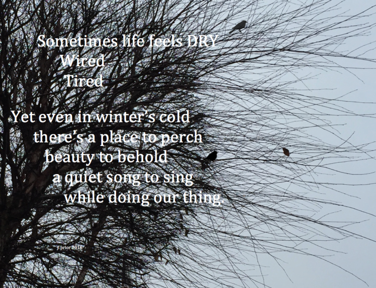 sunday-tree-poem