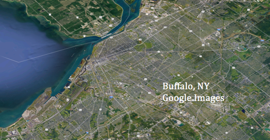 buffalo-credit-google-images