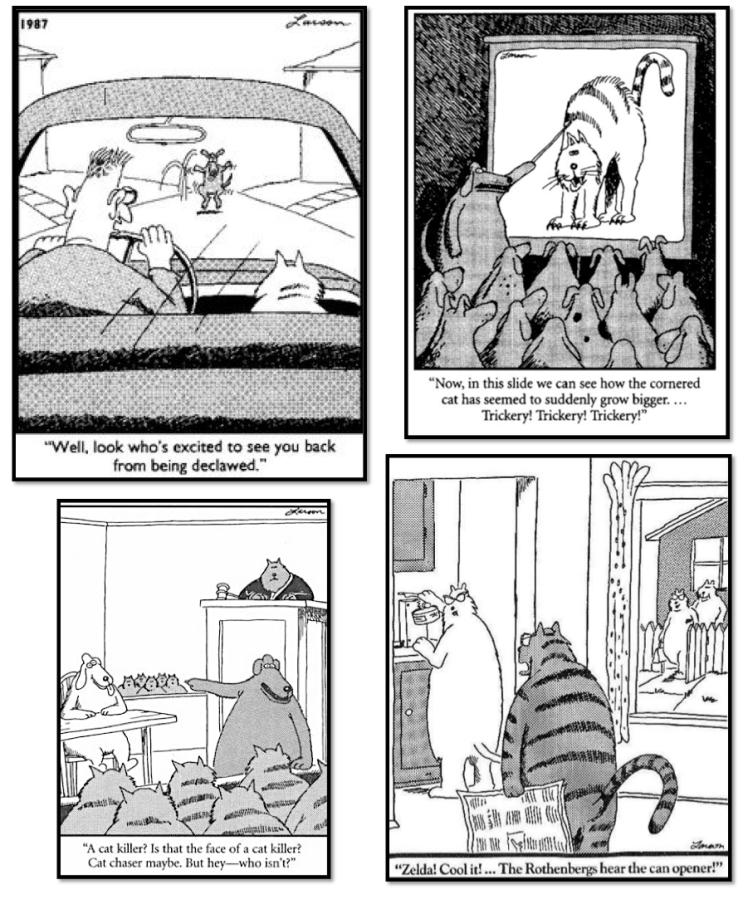 cat comics 4