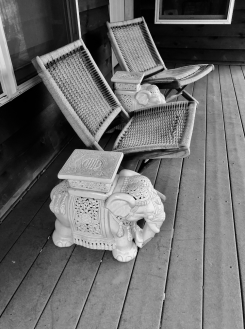 chairs and elephant