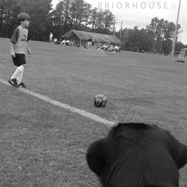 Steve keeping watch at soccer game