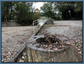 Boat Ramp- whispering of the 1950s