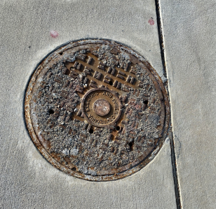 bloom sewer cover