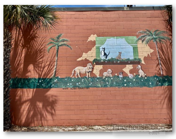 shadow-shade-lens-artist-june-2021- mural art dogs
