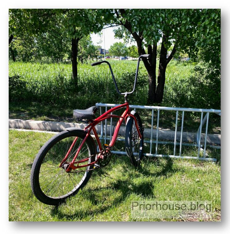 bike tree squares red bike