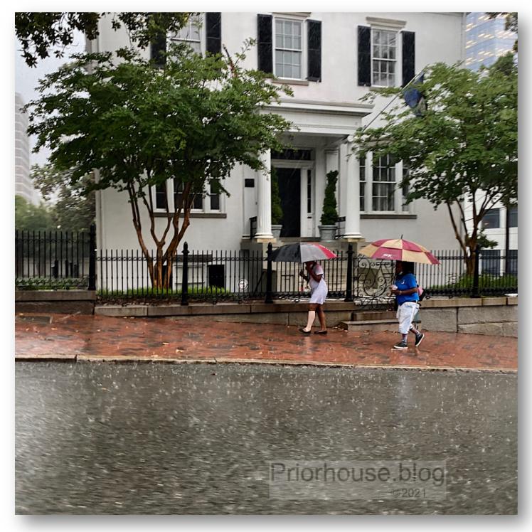 doors tree squares umbrellas RVA